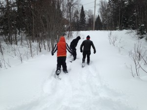 Winter Fun - Snowshoeing